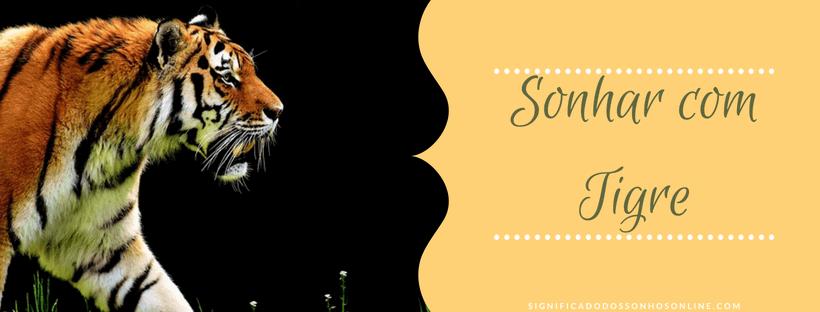 ▷ Sonhar com Tigre 【IMPERDÍVEL】