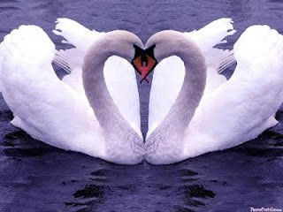 ▷ Simpatias Para o Amor 【INFALÍVEL】