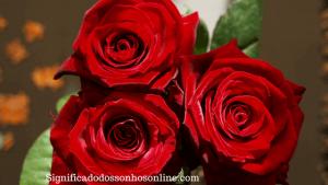 ▷ Sonhar com Rosas Vermelhas -【Isso fará você se surpreender】