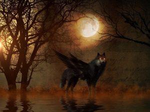 Read more about the article ▷ Qual Significado de Sonhar Com Lobo?