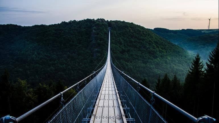 ponte perto de uma grande floresta escura a noite
