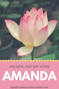 Read more about the article Significado do nome Amanda