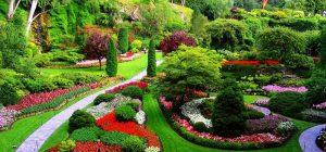 ▷ Sonhar Com Jardim Significa Sorte?