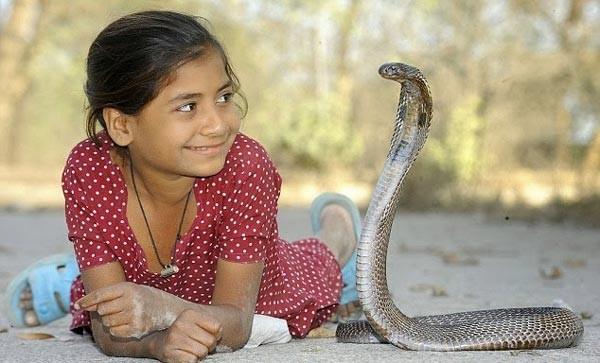 menina olhando para cobra
