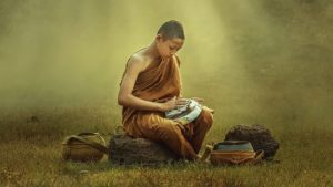 Uma história Zen dedicada àqueles que te criticam