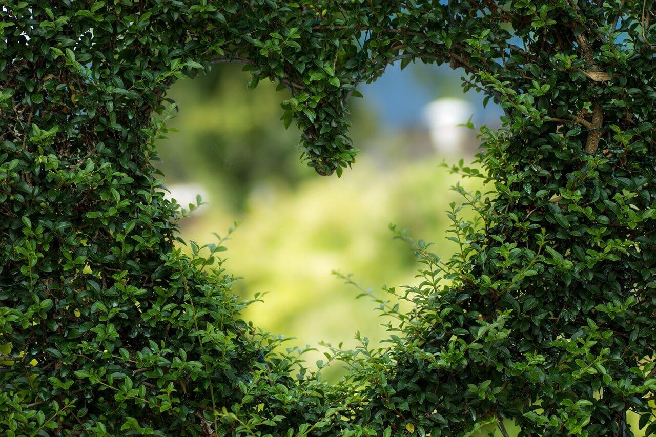 O Conselho de Amor Que Todos Os Signos Do Zodíaco Devem Seguir