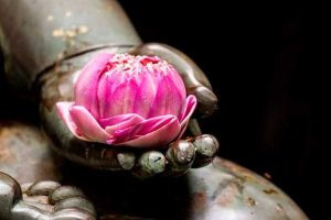 6 Ensinamentos Budistas Sobre o Conceito De Amar