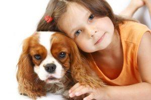 A Ciência Mostra Que Os Cães Podem Detectar Uma Pessoa Ruim
