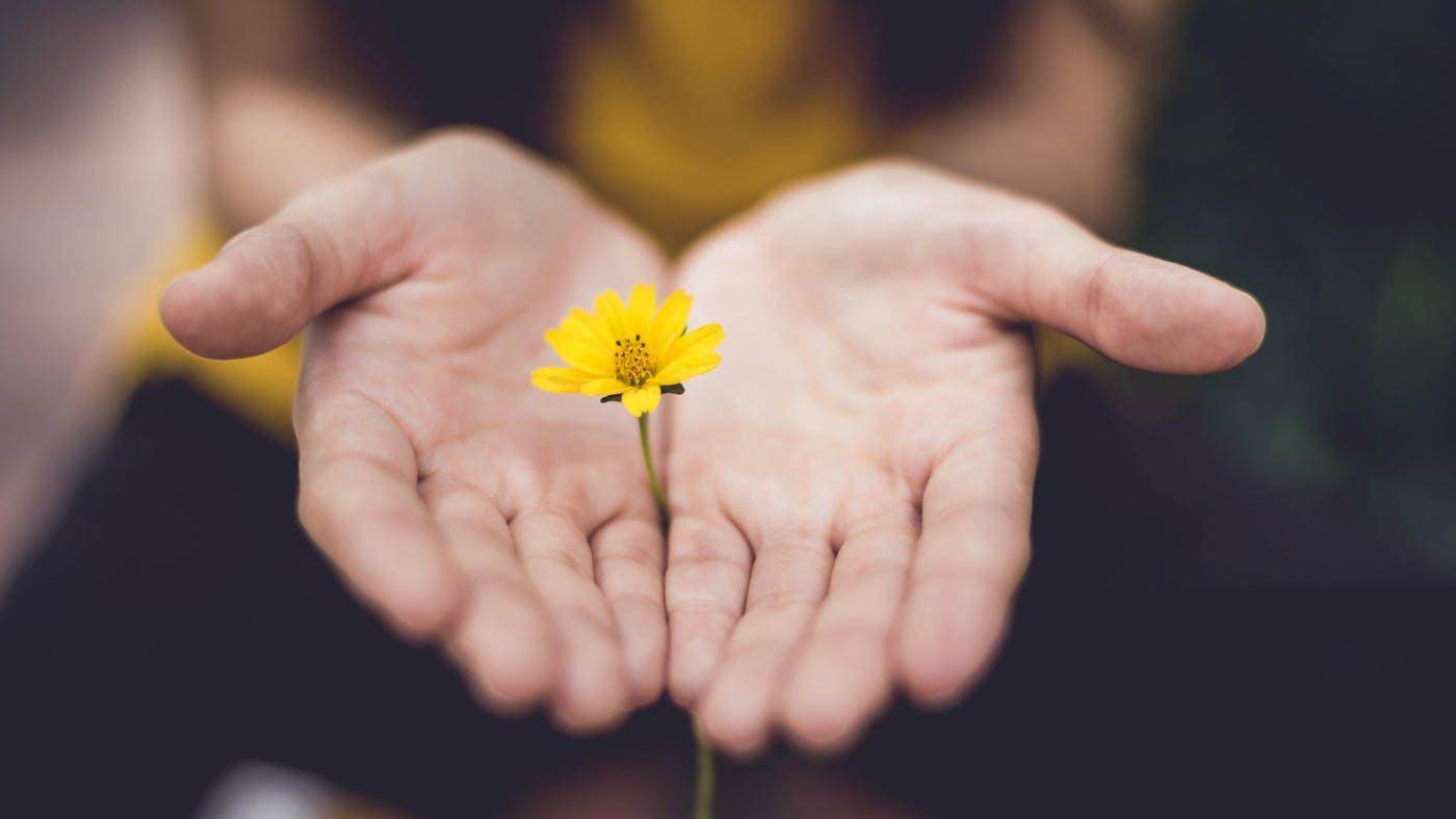 Salve Essas 10 Frases De Gratidão Para Repetir Sempre Que Se Sentir Triste