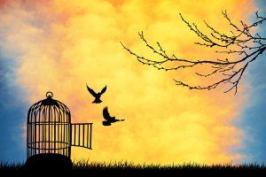 Esperar Demais Dos Outros: 4 Formas De PARAR De Fazer Isso