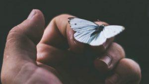 Leia Essa Carta De Quem, Lá Do Céu, Cuida De Você