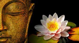 Uma Estratégia Budista Para Lidar Com o Medo e a Raiva