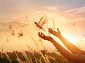 ▷ 25 Lindos Recados de Deus Para Você