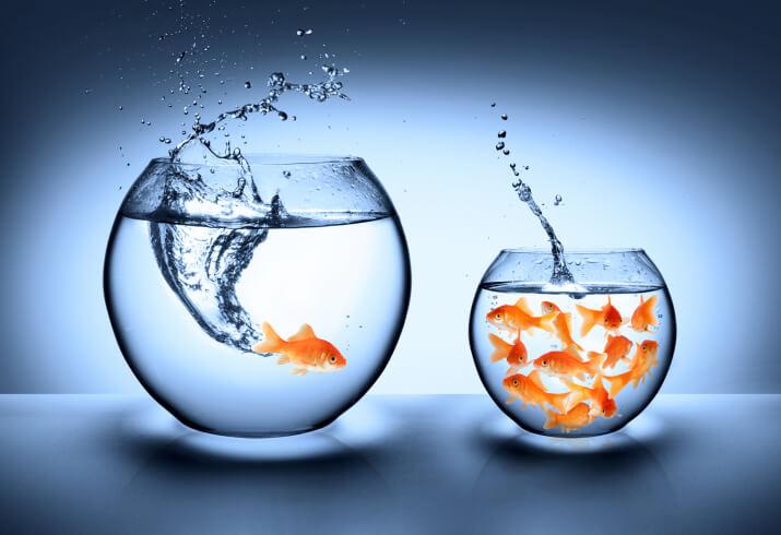 Se você está insatisfeito com sua vida, é sua responsabilidade mudar…