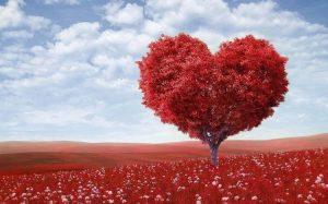 😍7 Poesias De Amor Para Namorado 【Ele vai ficar ainda mais apaixonado】