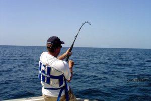▷ Sonhar Pegando Peixe 【Não se assuste com o significado】