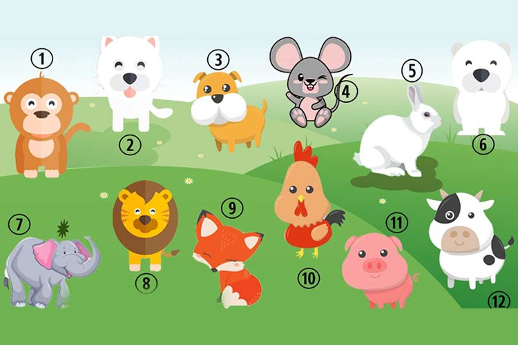 Qual é o seu animal favorito? Descubra o que ele revela sobre você!