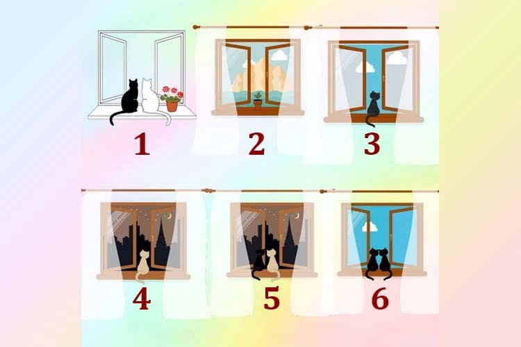 Qual janela você escolhe? Ela irá te mostrar o que realmente é bom para você hoje!