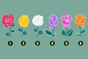 A rosa que você escolher irá revelar verdades assustadoras sobre sua vida pessoal