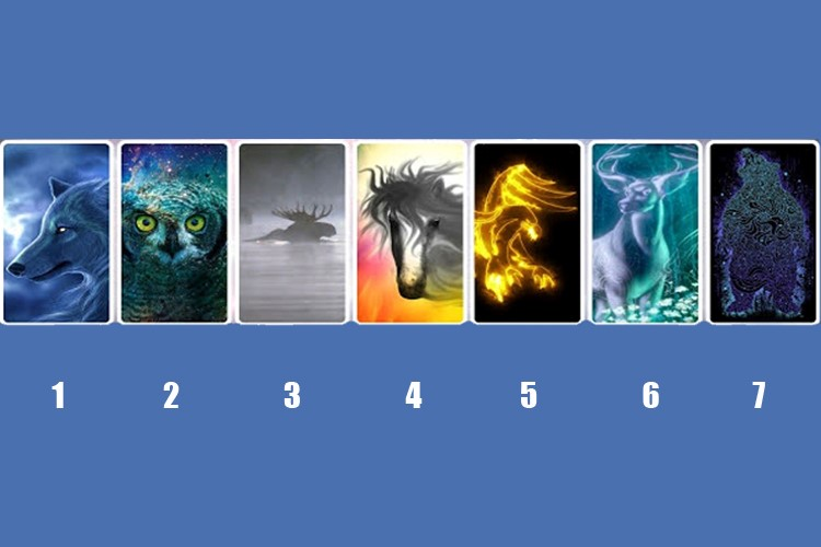 Escolha um animal espiritual e receba uma previsão para seu futuro!