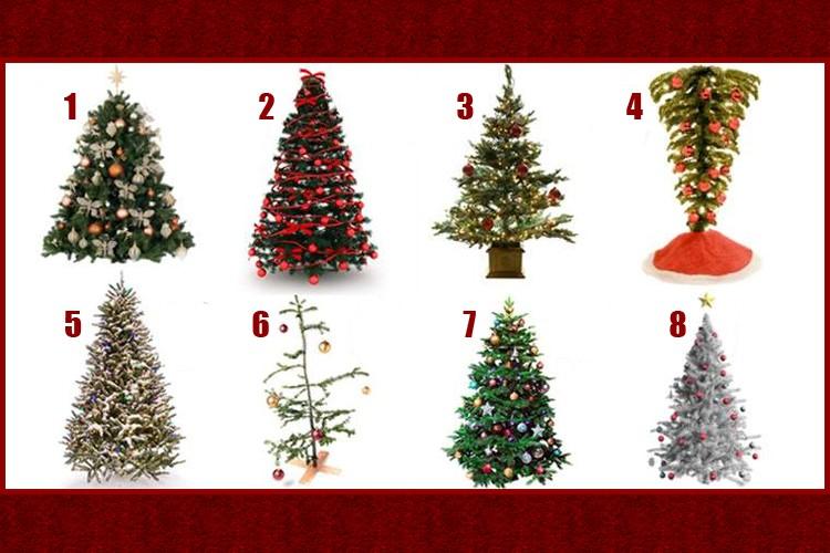 Escolha uma árvore de Natal e descubra como será o seu final de ano