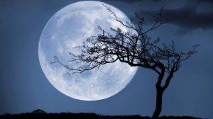 ▷ Sonhar Com Lua Cheia – É Bom Presságio?