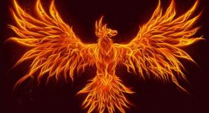 ▷ Fênix Significado Espiritual (Tudo O'que Você Precisa Saber)