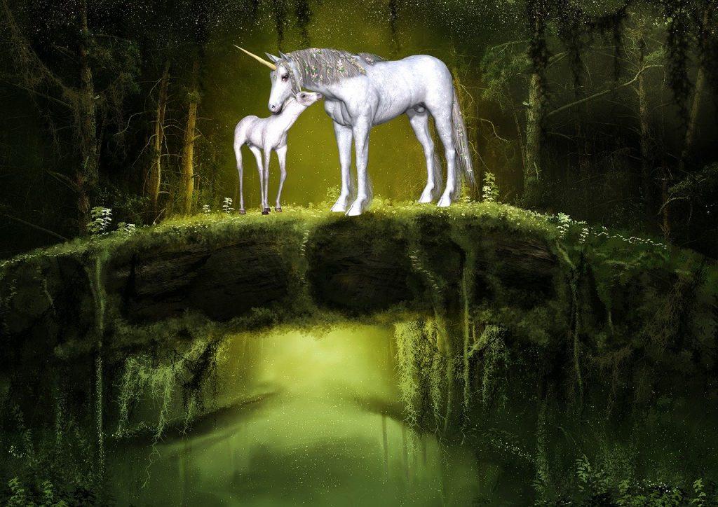 dois unicórnios na floresta