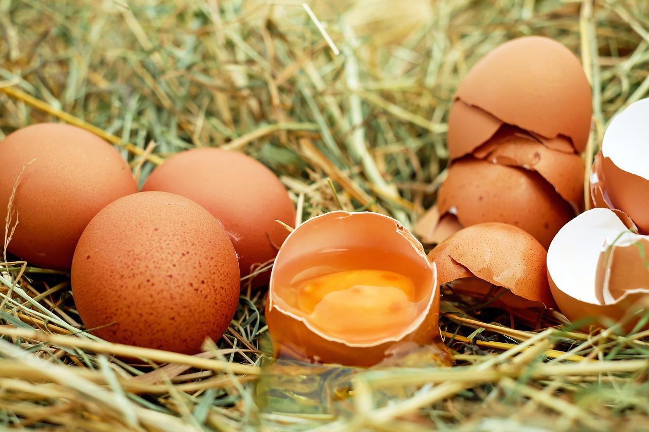 ▷ Sonhar Com Ovos Quebrados é Mau Presságio?