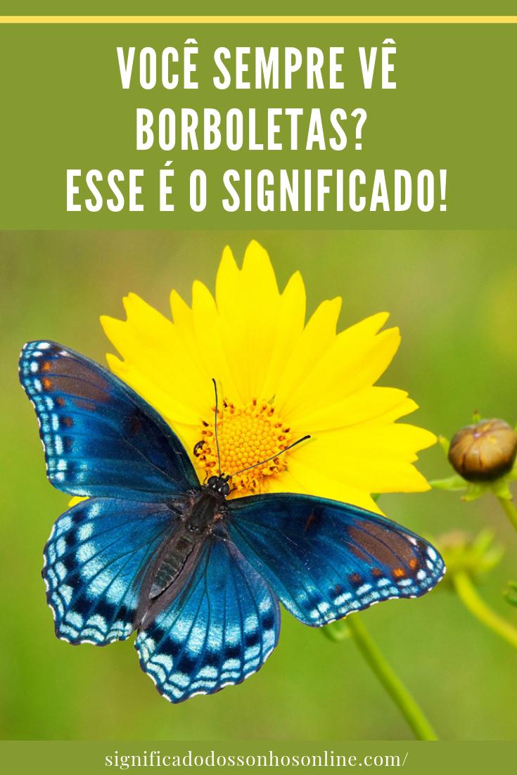 Você vê borboletas constantemente? Esse é o significado!