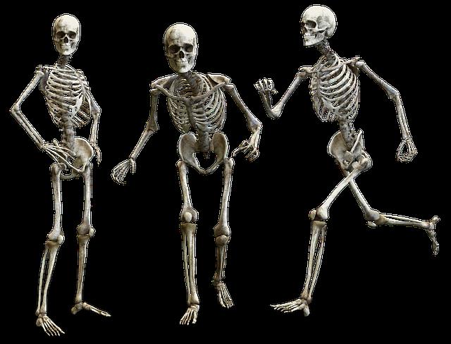três esqueletos humanos